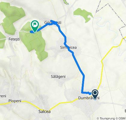 Route from DC65, Dumbraveni