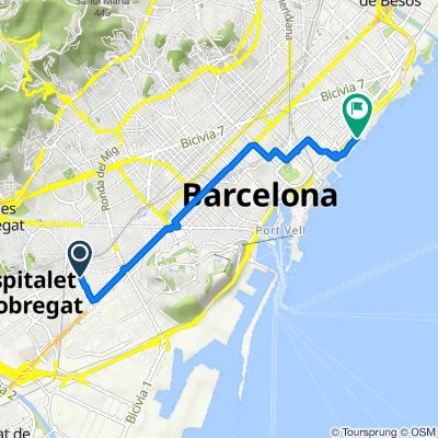 Hospitalet - Passeig Marítim del Bogatell, Barcelona