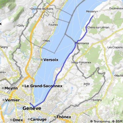 Elvetia-Franta 2010. Ziua 10
