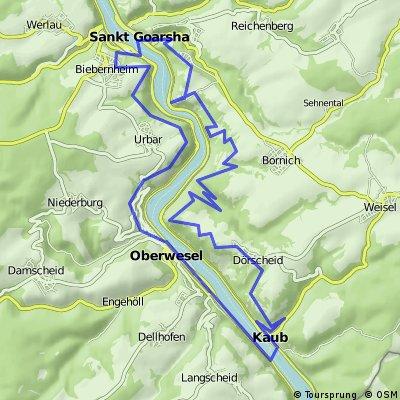 MTB Runde von Oberwesel-Rheinsteig-Loreley-Kaub CLONED FROM ROUTE 899589
