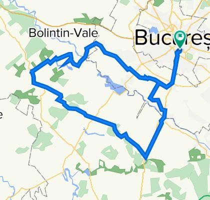 Bucuresti - Magurele - Domnesti - Tantava - Bucsani - Bulbucata - Iepuresti - Calugareni - 1 Decembrie - Alunisu