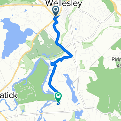 629 Washington St, Wellesley to 100 Winding River Rd, Needham