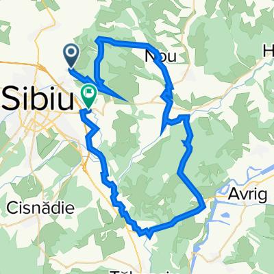 Route from Strada Salcâmilor, Sibiu