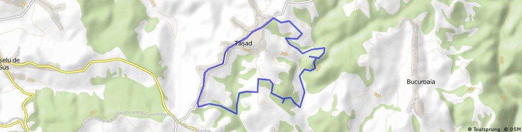 Arii protejate din judetul Bihor - Rezervatia Geologica Tasad