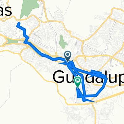 De Calzada Revolución Mexicana, Guadalupe a Calle de La Vía 67B, Guadalupe
