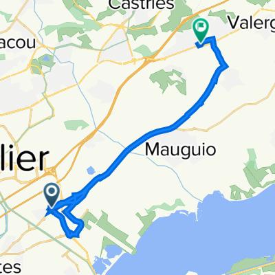 De 1 Place du Nega Cat, Lattes à 304 Route Impériale, Baillargues