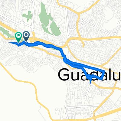 De Paseo Francisco García Salinas 315, Guadalupe a Calle Agapantos 111, Guadalupe