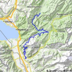 ncn 4 - Etappe 8 (Montbovon-Aigle)