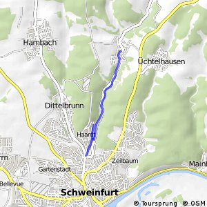 Schweinfurt Turngemeinde - Zell