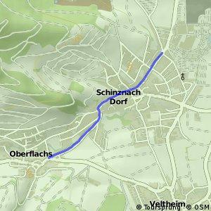 Oberflachs-Schniznach-Dorf