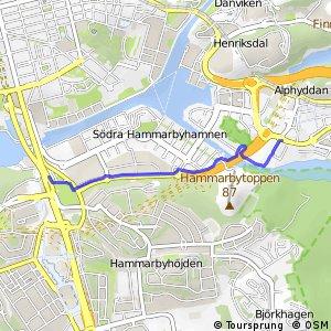 Regionalt cykelnät Stockholm (Hammarbystråket)