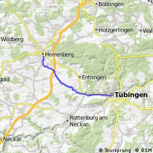 Tübingen-Herrenberg gemeinsam