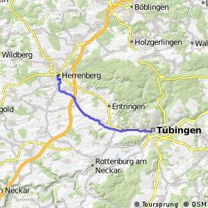 Tübingen-Herrenberg (Schillerstraße/Bahnhof)