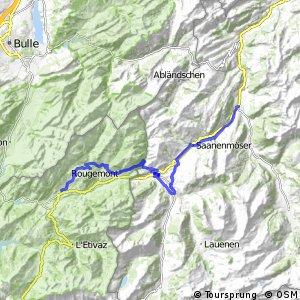 Alpine Bike - Etappe 15 (Zweisimmen–Château-d'Oex)