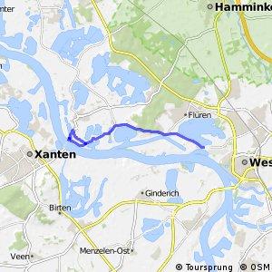 Rheinauen - Schleife