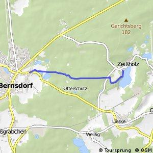 Große Bernsdorfer Runde - Rückweg
