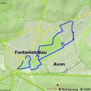 Circuit découverte du domaine national du Chateau de Fontainebleau