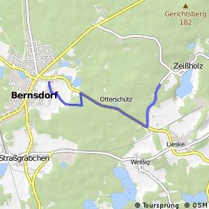 Froschradweg - Umleitung