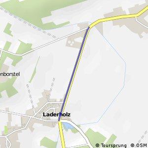 R220 Laderholz 1 - Rodewald