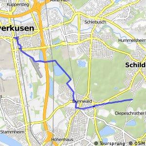 Knotennetz NRW Koeln (35) - Leverkusen (66)