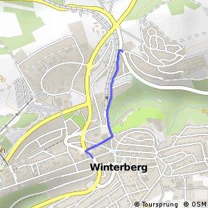 RSW (HSK-55) Winterberg - (HSK-56) Winterberg