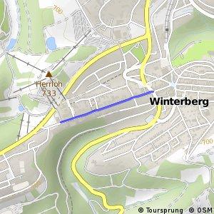 RSW (HSK-56) Winterberg - (HSK-57) Winterberg