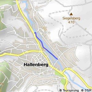 RSW (HSK-59) Hallenberg-Liesen - (HSK-61) Hallenberg