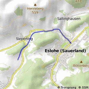 RSW (HSK-42) Eslohe-In der Marpe - (HSK-43) Eslohe