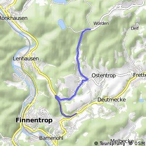 RSW (OE-49) Finnentrop-Frettermühle - (OE-52) Finnentrop-Glingestraße