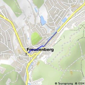 RSW (SI-57) Freudenberg - (SI-58) Freudenberg