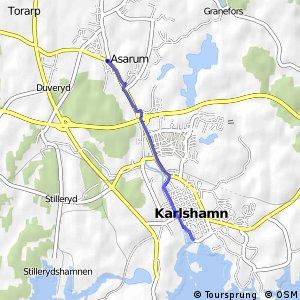 Asarum - Karlshamn